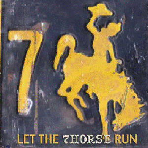 7Horse - Let The 7Horse Run (album cover)